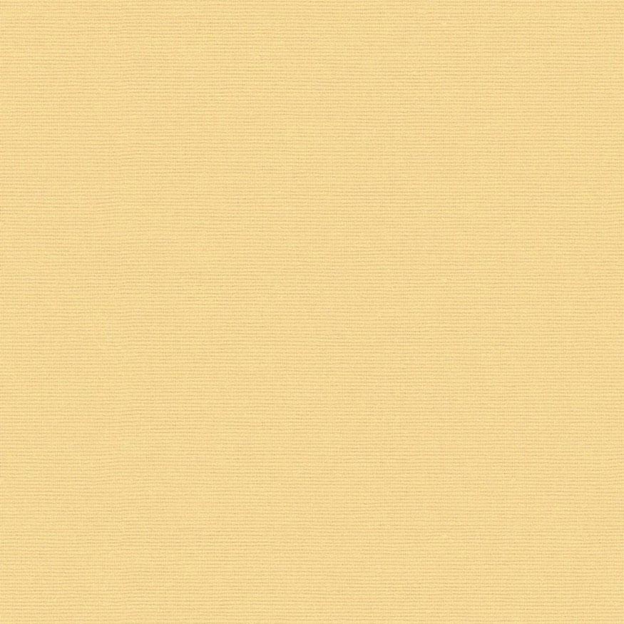 Loneta tintado liso crema
