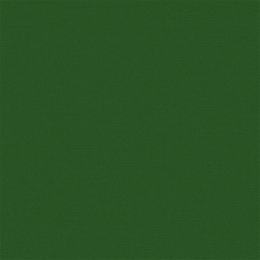 Loneta tintado liso verde