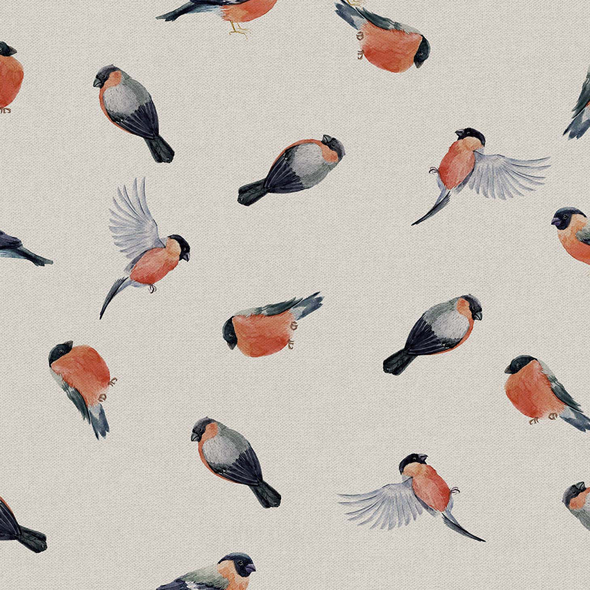 Bullfinch 801