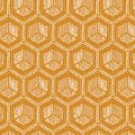 lonas geométrica
