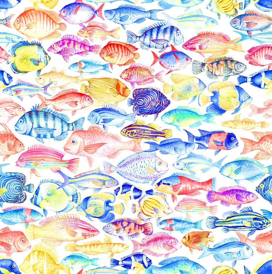 telas con peces de colores